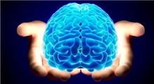 رازهای شگفت انگیز دررابطه با مغز