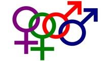 جداسازی جنسی و رشد فمینیسم
