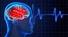 مهمترین بیماری های مغز و اعصاب که باید بشناسید