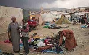 بربرهای مراکش