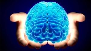 دانستنی های شگفت انگیز درباره مغز