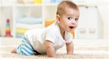 نوزادان چه زمان شروع به چهار دست و پا راه رفتن می کنند؟