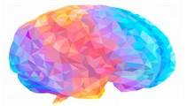 اثر روانشناسی رنگ ها در زندگی