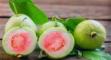 آشنایی با خواص میوه گواوا