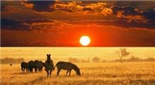زیباترین مکان های گردشگری در قاره آفریقا