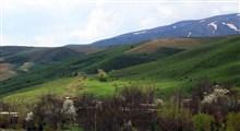 سیلوانه طبیعتی زیبا و چشم نواز در ارومیه