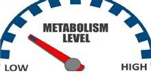 چگونگی افزایش متابولیسم بدن
