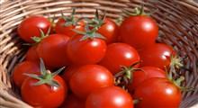 آشنایی با خواص گوجه گیلاسی