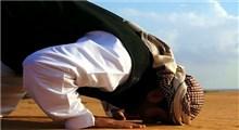 چرا سجده بر خاک فضیلت دارد؟