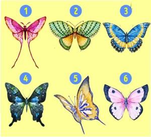با انتخاب یکی از پروانه ها به ویژگی های شخصیتی خود پی ببرید