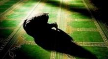 معرفی مؤمن حقیقی در کلام امام سجاد علیه السلام