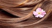 همه آنچه باید در مورد حفظ سلامت موها بدانیم