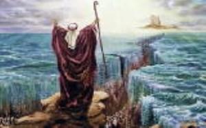 شریعت موسوی یگانه  شریعت