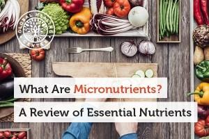 مواد مغذی چه موادی هستند؟