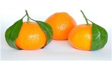 آشنایی با فواید نارنگی یافا