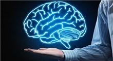 چگونه مغزی سالم داشته باشیم؟