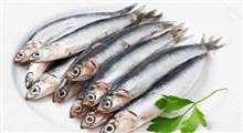 ماهی ساردین و فواید آن برای سلامتی