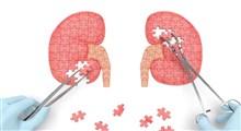 نارسایی کلیه چیست و چگونه درمان می شود؟