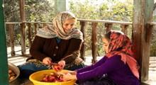 مادری سنتی و مدرن، تقابل یا تعامل
