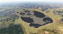 اولین مزرعه خورشیدی به شکل پاندا در چین