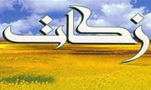 نگاهی گذرا به مسئله زکات در قرآن