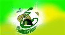 بعثت در کلام حضرت علی  و حضرت فاطمه زهرا سلام الله علیهما