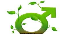 10 گیاه دارویی فزاینده قدرت باروری