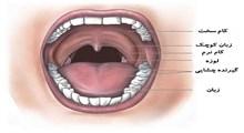 دهانت را باز کن بگو: آآآآآآ