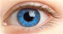 علت محافظت از چشم ها در فصل تابستان