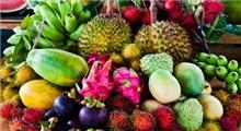 آشنایی با برخی از میوه های استوایی و خاصیت آنها