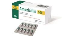 از کاربرد تا منع مصرف قرص آموکسی سیلین