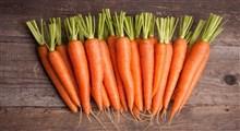 درباره هویج،خواص و مضرات آن چه میدانید؟