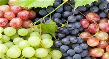 از خواص و مضرات انگور چه می دانید؟