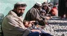 نگاهی آماری به مهاجرت اتباع خارجی به ایران