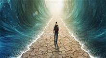 تعامل روح و بدن و هماهنگی جسم و روان