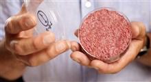 گوشت کشت شده در آزمایشگاه