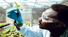 نقش پر اهمیت تحقیق و توسعه و نیز بازارهای مستقیم تولید به مصرف در کشاورزی