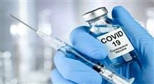 واکسن فایزر و ماجرای خرد دینی در دنیای گرگها