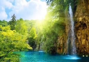 ضمانت ورود به بهشت