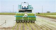 کشاورزی هوشمند و نقش داده کاوی در آن