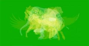 اولین حیوانی که میبینید، اطلاعاتی درباره شخصیت شما نشان میدهد