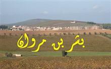 بشر بن مروان