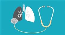 گیاهان دارویی موثر در سلامت ریه