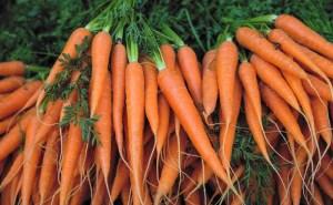 آشنایی با فواید هویج برای پوست، مو و سلامتی (بخش دوم)
