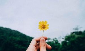 افکار مثبت برای رسیدن به هدف