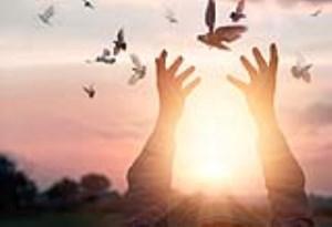 بخشش و گذشت داشتن در زندگی