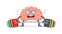 هوش هیجانی و آموزش و پرورش (بخش اول)