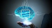 تفاوت هوش شناختی و هیجانی