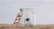 آیا تدبیر برای رضامندی از زندگی لازم است؟