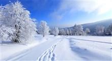 مراقبت های لازم در فصل سرما (بخش اول)